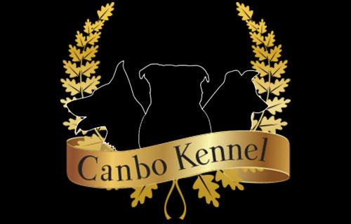 diseño-logotipo-profesional-canbokennel-magicalartstudio