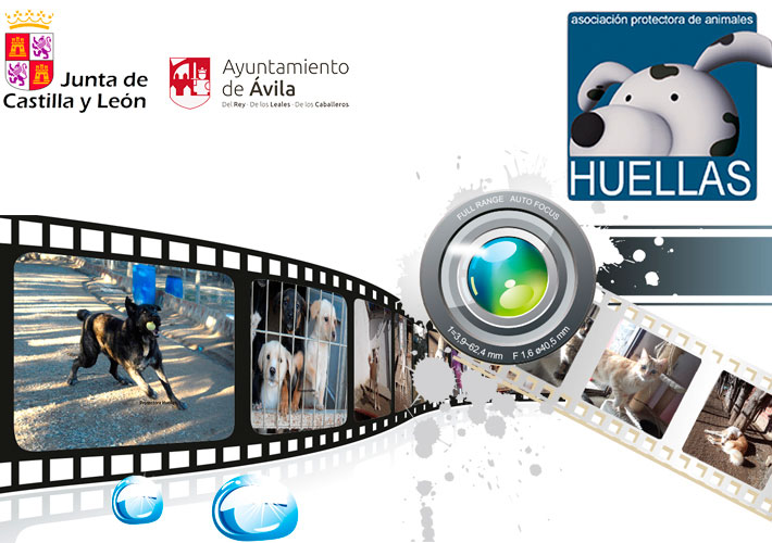 Video promocional Protectora Huellas, vídeo de empresa